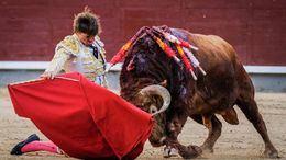 Juan Leal muletea de rodillas al toro que después le hirió