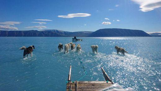 Otra evidencia más del cambio climático: adiós al hielo en Groenlandia
