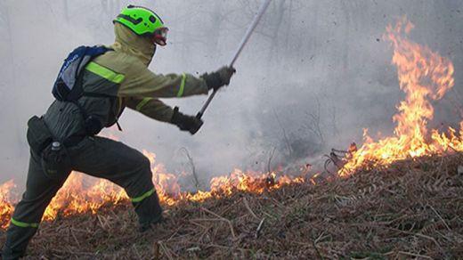 El Gobierno envía medios de extinción a 14 incendios forestales en 7 comunidades