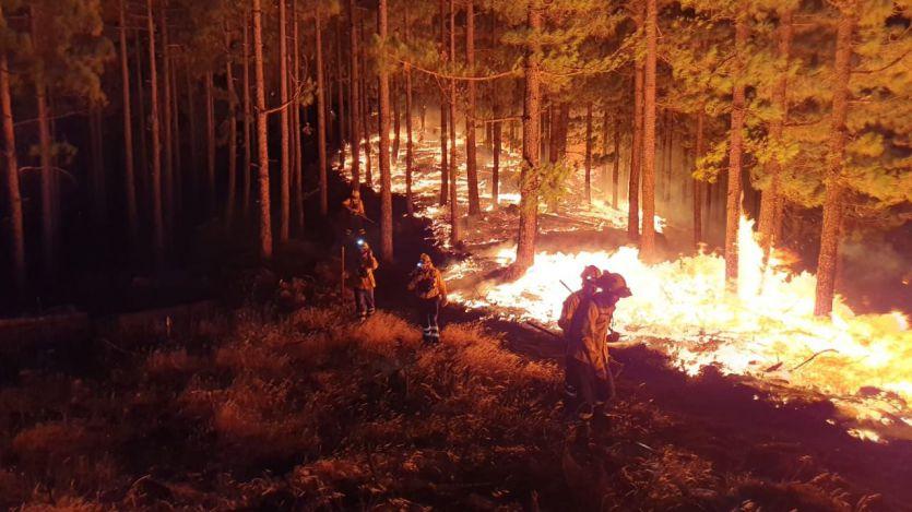 Las terribles cifras del incendio de Gran Canaria: 6.000 hectáreas arrasadas y 9.000 evacuados
