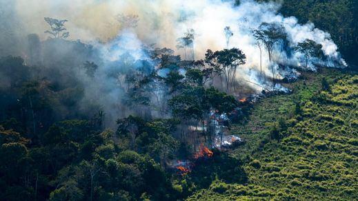 Arde el Amazonas, el pulmón verde del planeta: el humo llega hasta Sao Paulo
