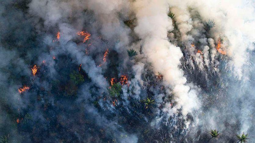 Brasil envía al Ejército a combatir el fuego en la Amazonia