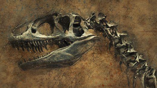 Investigadores revelan cómo fue el primer día de la extinción de los dinosaurios