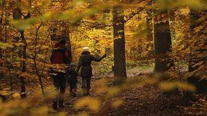 Arranca el otoño con el equinocio: durará 89 días y 20 horas