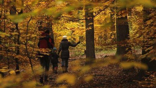 Comienza el otoño con el equinocio, que durará 89 días y 20 horas