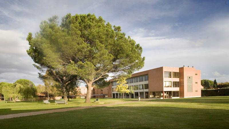 Un directivo de la Universidad Camilo José Cela presentó la misma tesis plagiada por la dimitida alto cargo de Ayuso