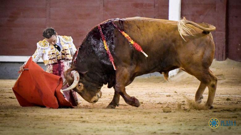 Ferrera fue el gran triunfador de la Feria de Otoño en su encierro en solitario del sábado 4 de octubre