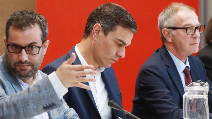 5 encuestas que ya reflejan el efecto de la sentencia del procés: el error histórico de Sánchez y el ascenso de las derechas