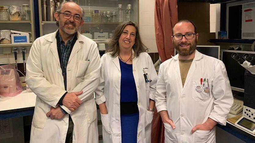 La Universidad de Castilla-La Mancha demuestra que el vino tinto tiene beneficios para prevenir el Alzhéimer