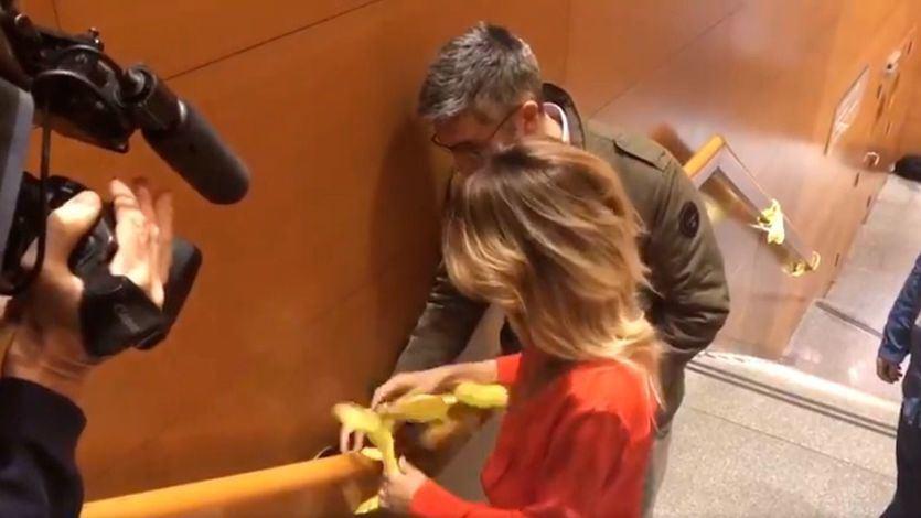 Cayetana Álvarez de Toledo retira lazos amarillos en TV3