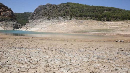 Bankia y la Fundación Montemadrid destinan 200.000 euros a 11 proyectos ambientales de Madrid y Castilla-La Mancha