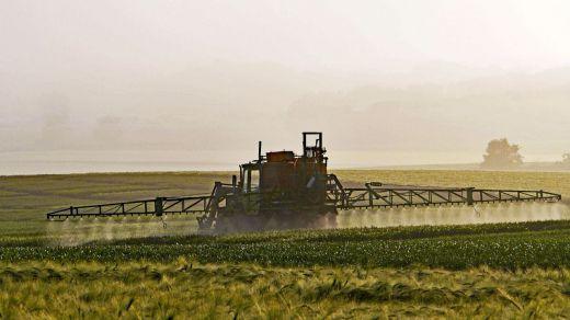 Bankia adelanta a los agricultores y ganaderos las ayudas de la PAC