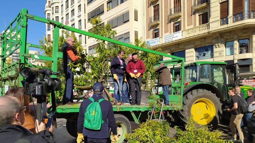 Protesta de agricultores en Valencia