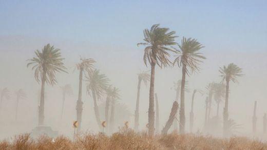 Canarias hace frente a una doble crisis: la fuerte calima y los incendios