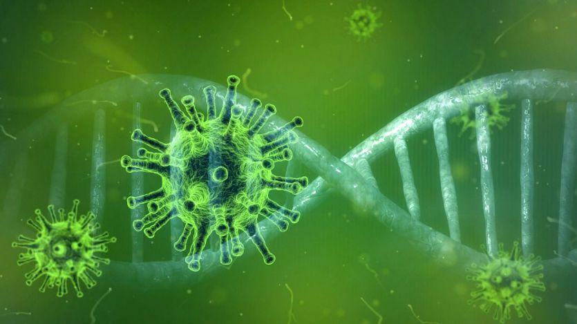 Suplementos alimenticios que podrían ser una barrera contra el coronavirus o curar sus síntomas