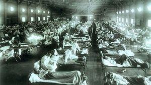 Pandemic Influenza: The Inside Story. Nicholls H, PLoS Biology Vol. 4/2/2006