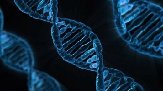 ¿Cómo afecta la predisposición genética individual a la gravedad de desarrollo del coronavirus?