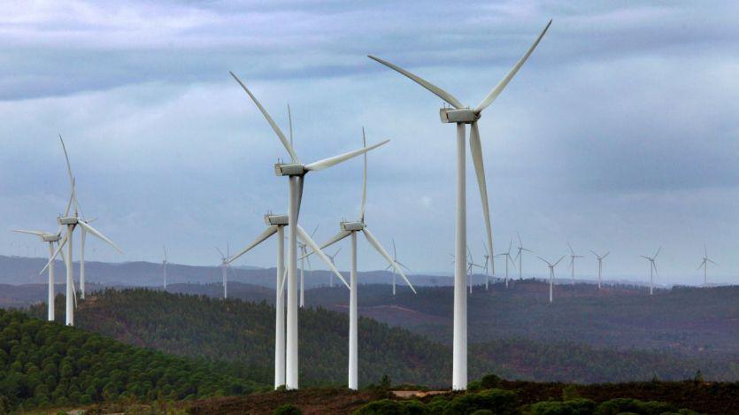 Bankia financia con 80 millones el desarrollo de uno de los mayores parques eólicos de España