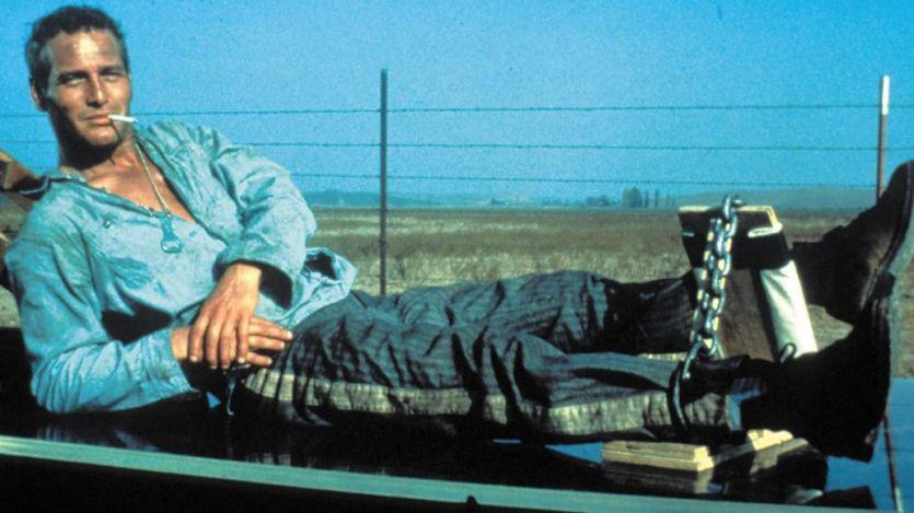 Las 50 mejores películas de los años 60 (del 50 al 41)