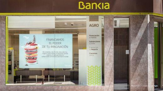 Bankia y Fundación Montemadrid destinan 300.000 euros a 19 proyectos ambientales de Madrid y Castilla-La Mancha
