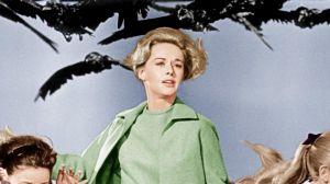 Las 50 mejores películas de los años 60 (del 40 al 31)