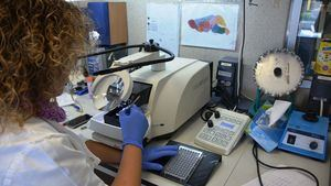 Investigadores desarrollan un test rápido 'fiable y sencillo' como alternativa a las PCR