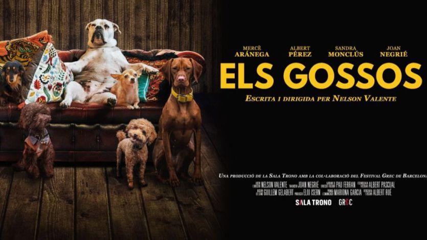 'Els gossos': un inteligente retrato del comportamiento humano