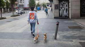 Pasear al perro en estado de alarma y toque de queda: prohibido en algunas comunidades