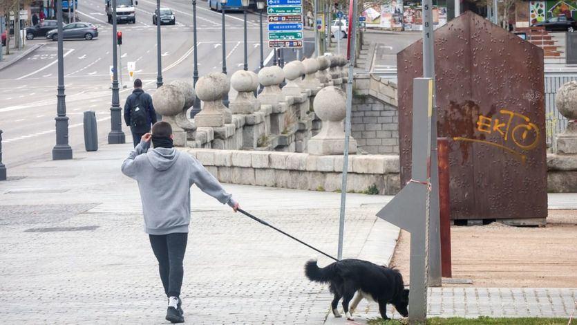 ¿Es recomendable sacar al perro durante la ola de frío?