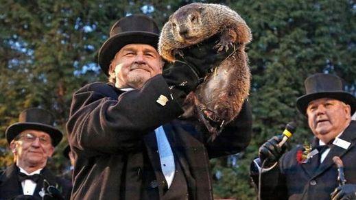 Los mejores memes del 'Día de la Marmota'