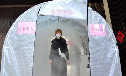 Los investigadores de la OMS descartan la teoría conspirativa: el coronavirus no salió de un laboratorio