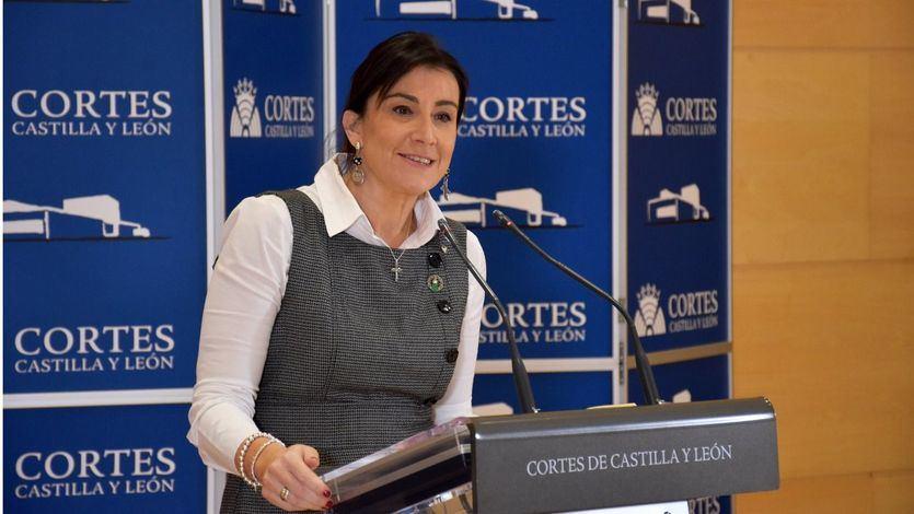 El PSOE de Castilla y León presenta una moción de censura contra el Gobierno de PP y Cs