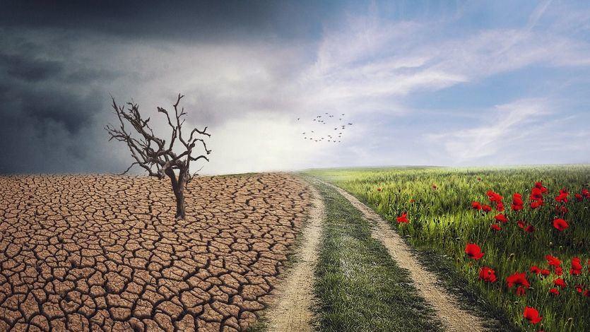 El Congreso avala la Ley de Cambio Climático, con el objetivo de alcanzar la neutralidad de emisiones en 2050