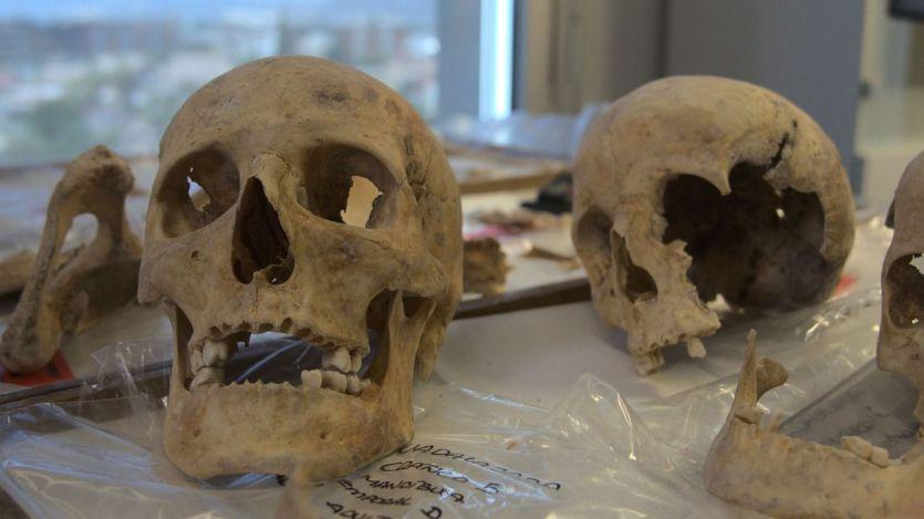 A punto de resolverse el misterioso origen de Cristóbal Colón: análisis definitivo de ADN