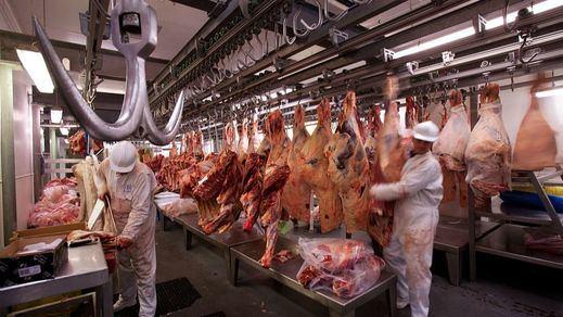 Garzón, tras las críticas por pedir consumir menos carne: