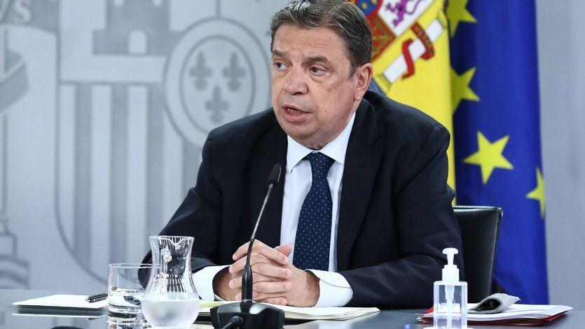 Otra batalla en el Gobierno: Planas critica las palabras de Garzón sobre el consumo de carne