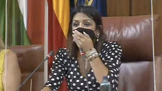 Una rata se cuela en el Parlamento andaluz y causa gran alboroto