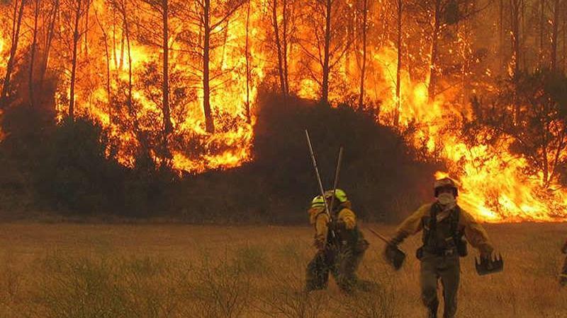 Varios incendios obligan al Gobierno a prestar ayuda a varias comunidades, entre ellas Cataluña