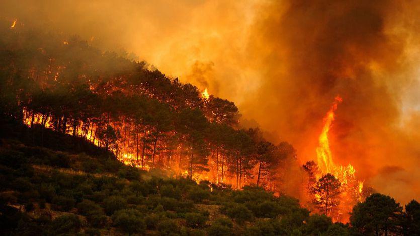 Controlado al 90% el grave incendio que se inició el fin de semana en Tarragona y Barcelona