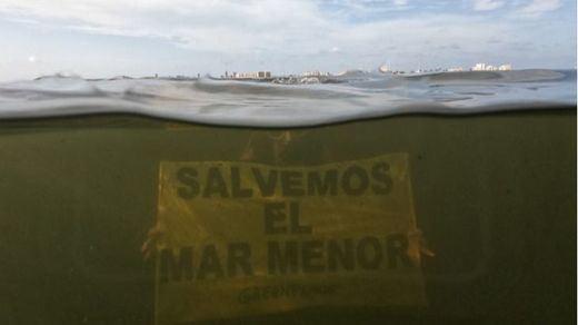 La principal causa de la muerte de toneladas de peces en el Mar Menor