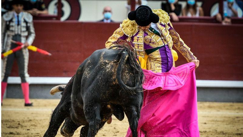 Emilio de Justo en una ajustadísima chicuelina ante el toro  con el que triunfó