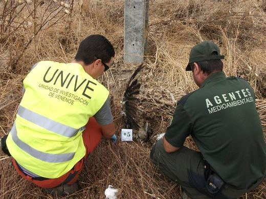 Los agentes medioambientales de Castilla-La Mancha lamentan el