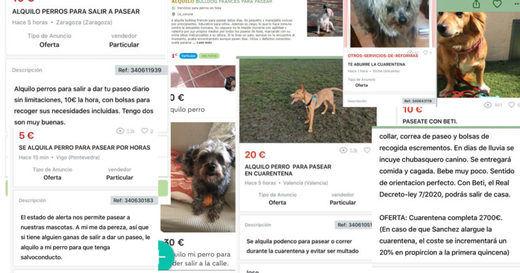 Pacma denuncia casos de supuesto alquiler temporal de perros para poder salir a la calle durante la cuarentena