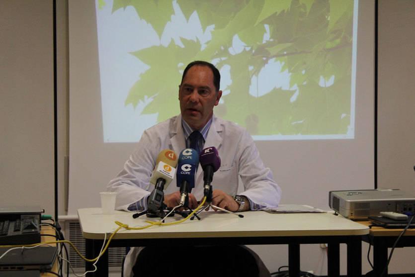 Toledo ha registrado los máximos niveles de pólenes de plátano de sombra de los últimos 20 años