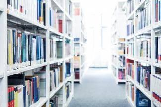 Estudios con certificación universitaria, accesibles económicamente y con una metodología muy sencilla