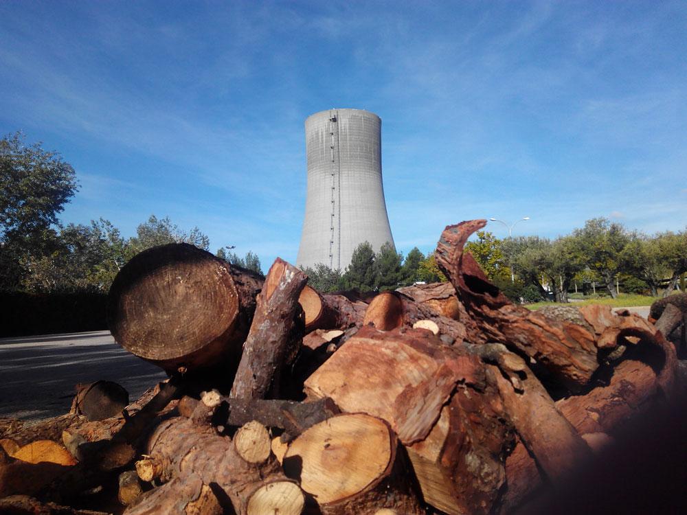 Mantener vivo 'el fuego' de la lucha por la viabilidad de Elcogas