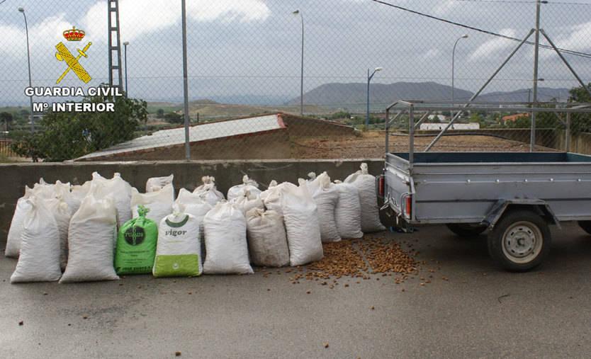 Recuperadas cinco toneladas de almendras que habían sido robadas en Liétor