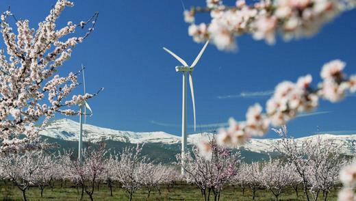 Iberdrola inicia la construcción de un conjunto eólico de 79 MW entre Málaga y Sevilla, en Andalucía