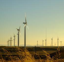 Iberdrola inicia la construcción del parque eólico El Pradillo, en Zaragoza