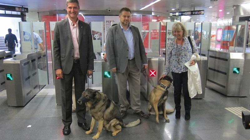 Metro de Madrid permitirá el acceso a los perros en toda la red sin las restricciones actuales